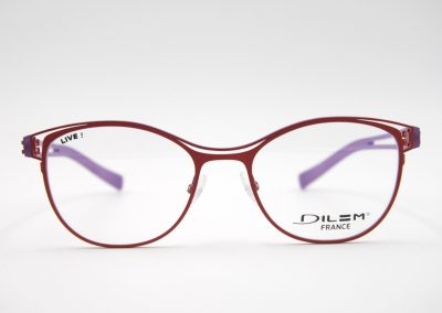 Optik-Weigend-Brille-DILEM-3CLB03A